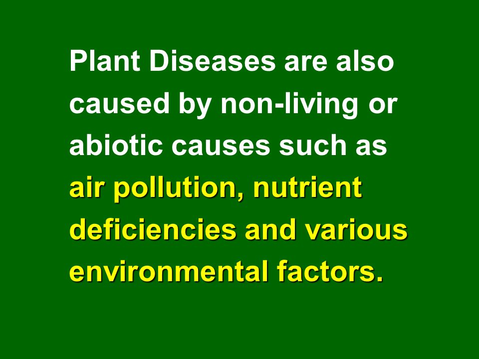 Plant Diseases are also