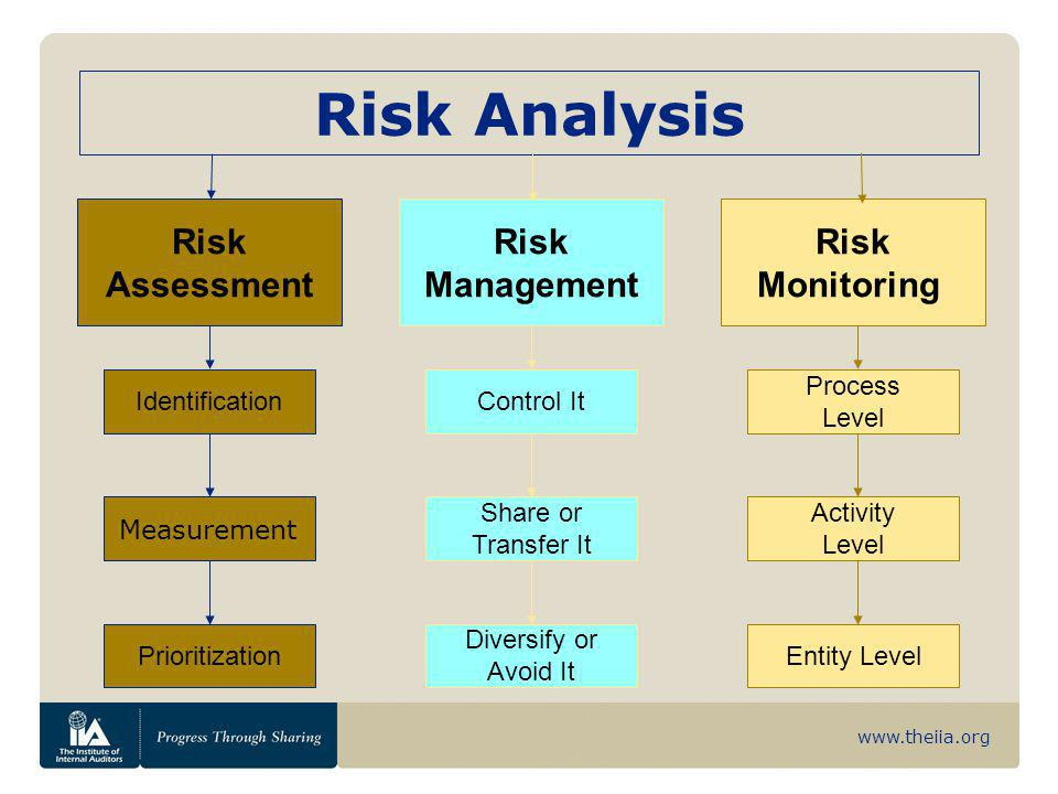 Risk Analysis Risk Management Monitoring Assessment Control It