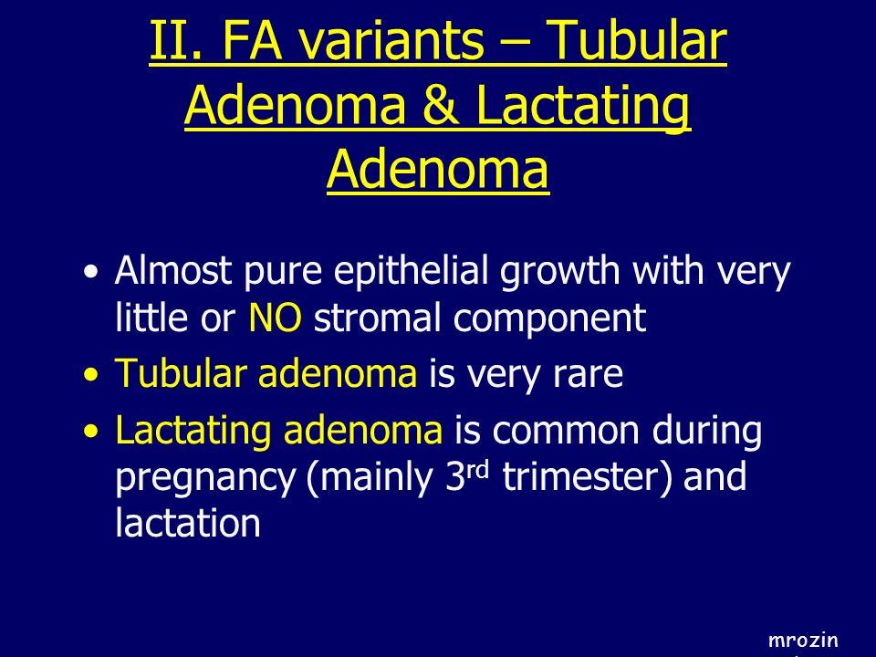 II. FA variants – Tubular Adenoma & Lactating Adenoma