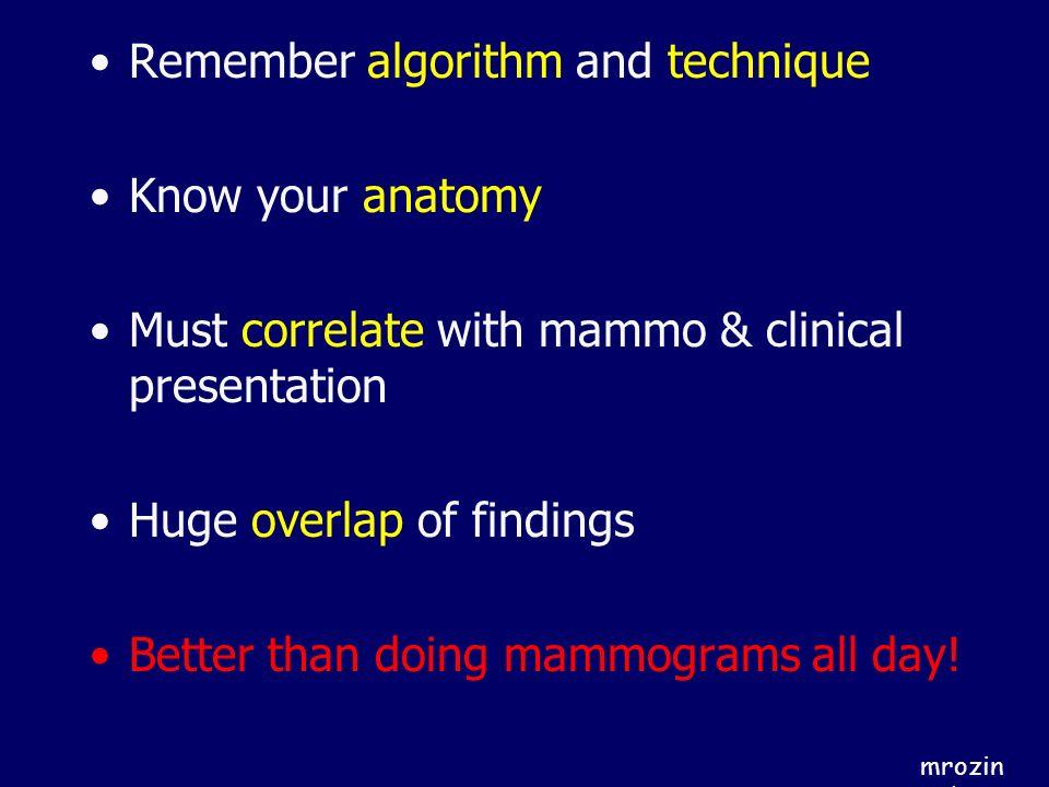 Remember algorithm and technique