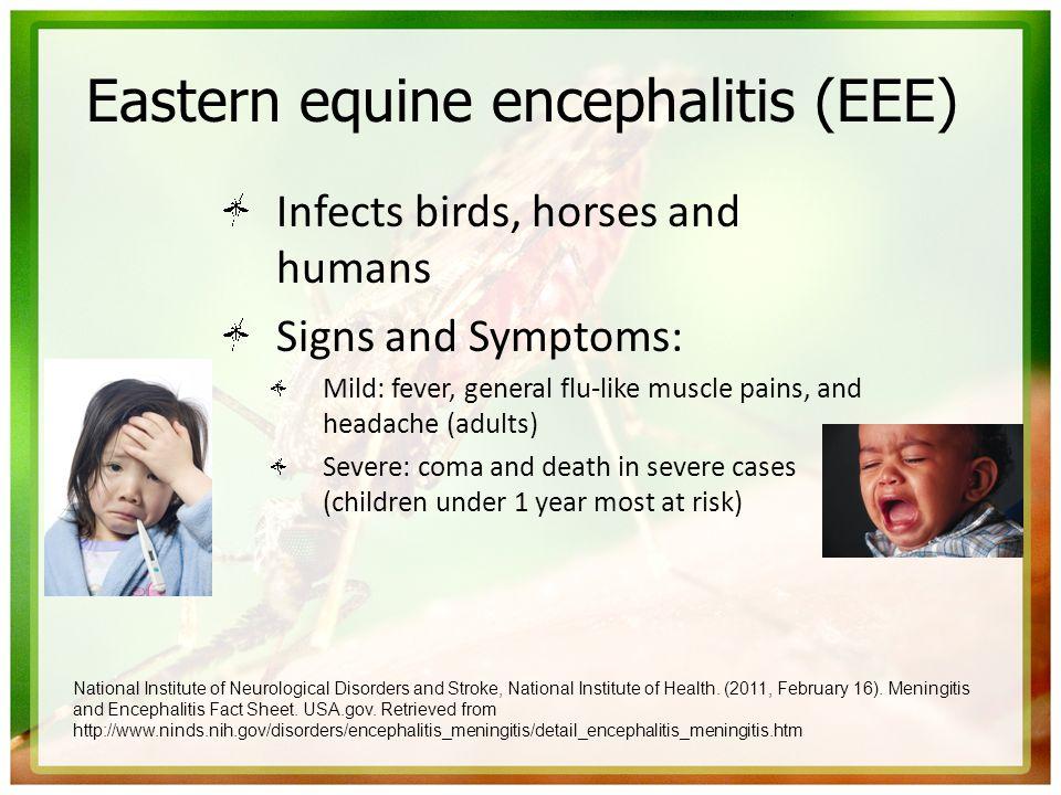 Eastern equine encephalitis (EEE)