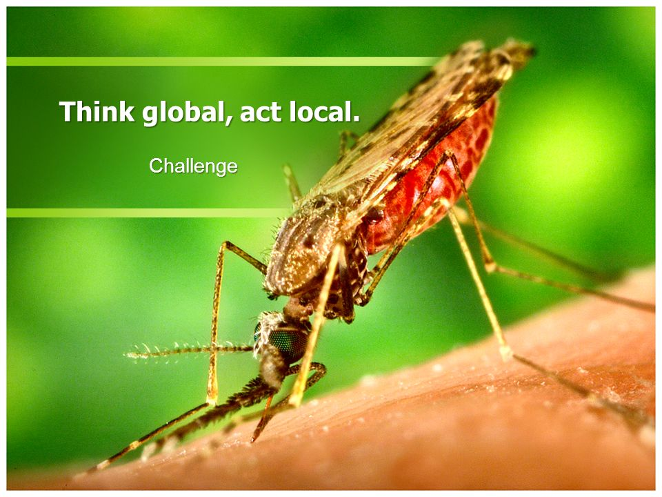 Think global, act local. Challenge