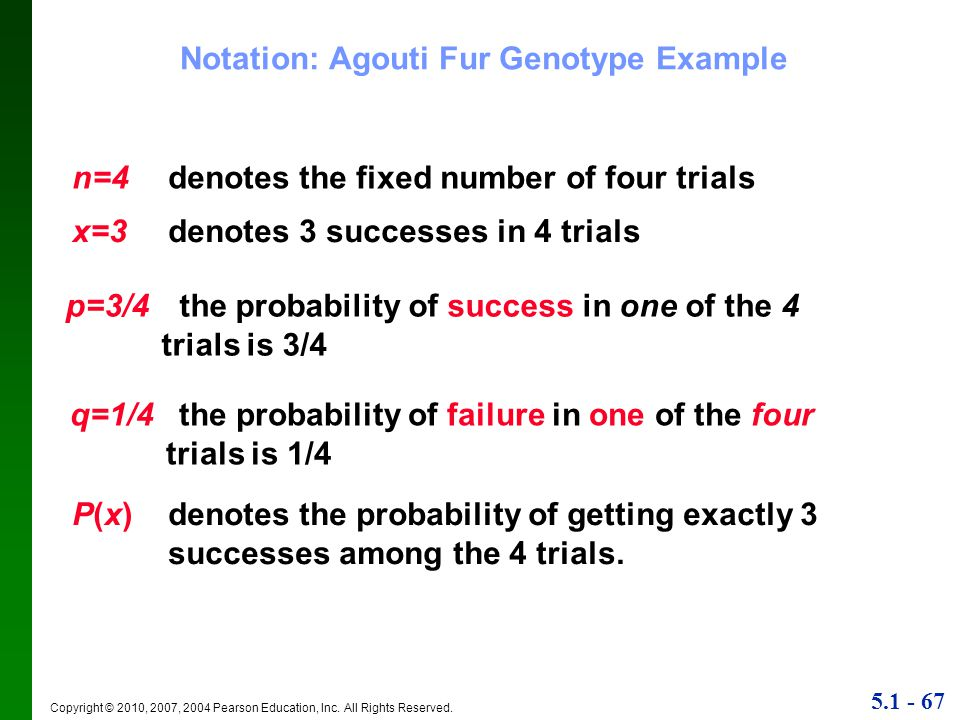 Notation: Agouti Fur Genotype Example