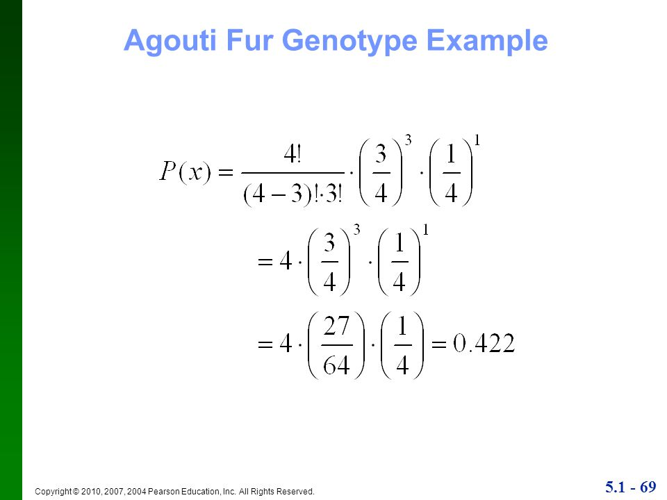 Agouti Fur Genotype Example