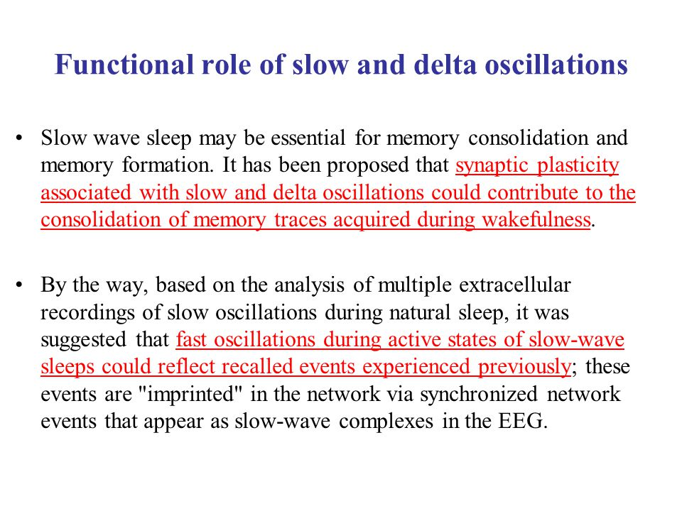 Functional role of slow and delta oscillations