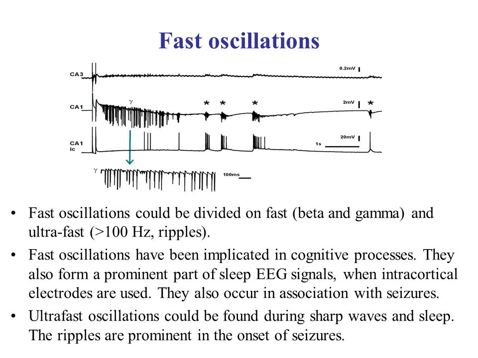 Fast oscillations Fast oscillations could be divided on fast (beta and gamma) and ultra-fast (>100 Hz, ripples).