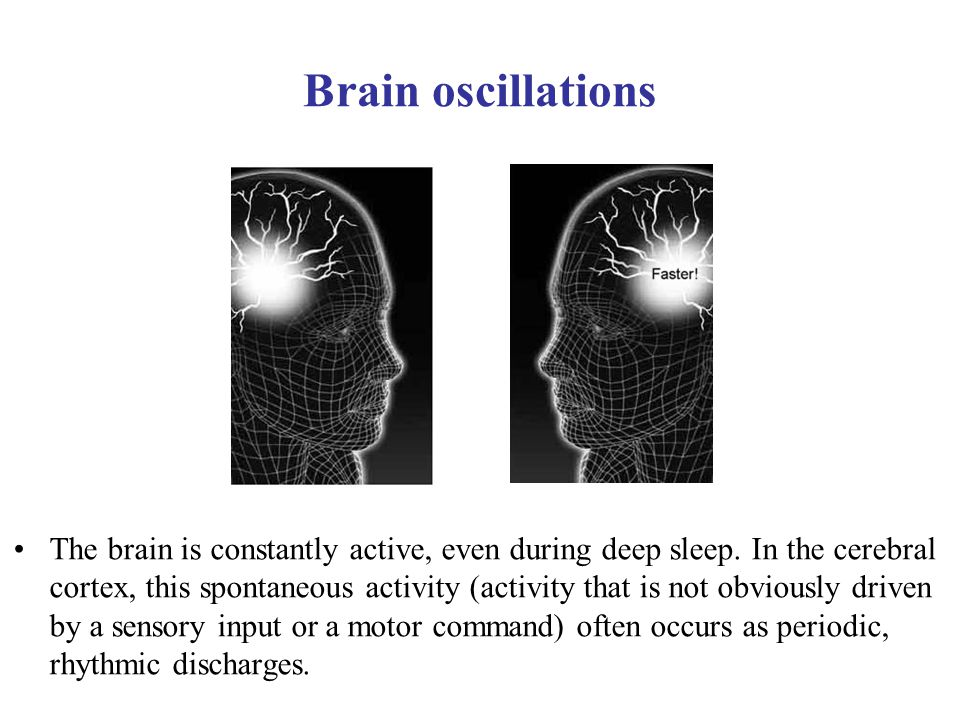 Brain oscillations