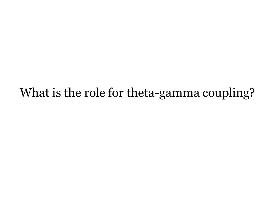 What is the role for theta-gamma coupling