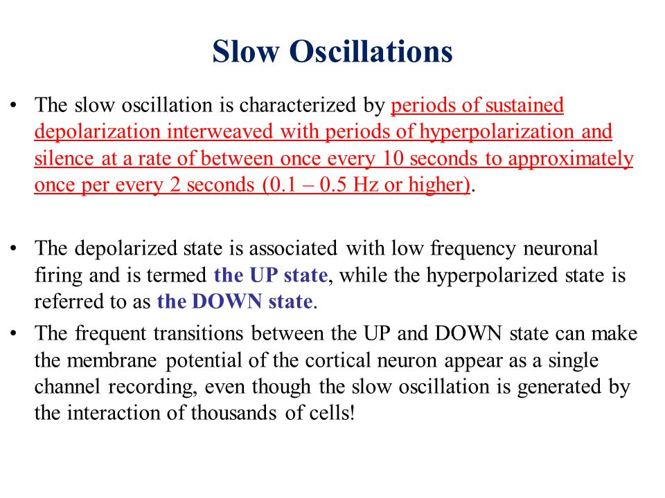 Slow Oscillations