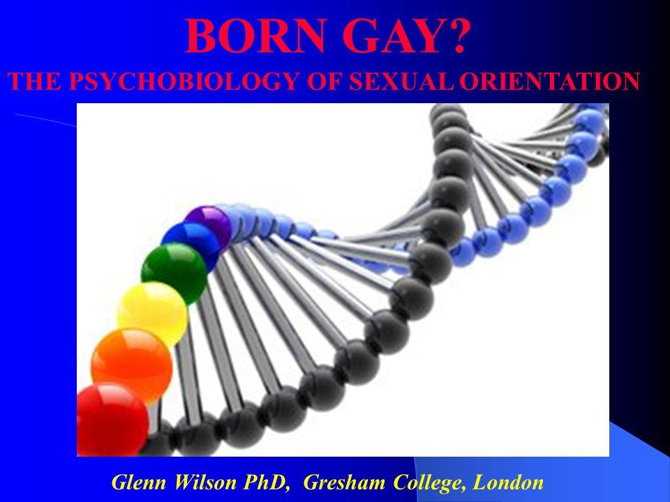 Glenn Wilson PhD, Gresham College, London
