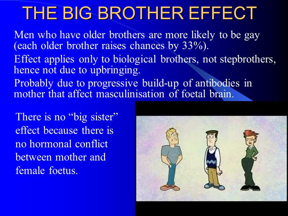 THE BIG BROTHER EFFECT Men who have older brothers are more likely to be gay (each older brother raises chances by 33%).