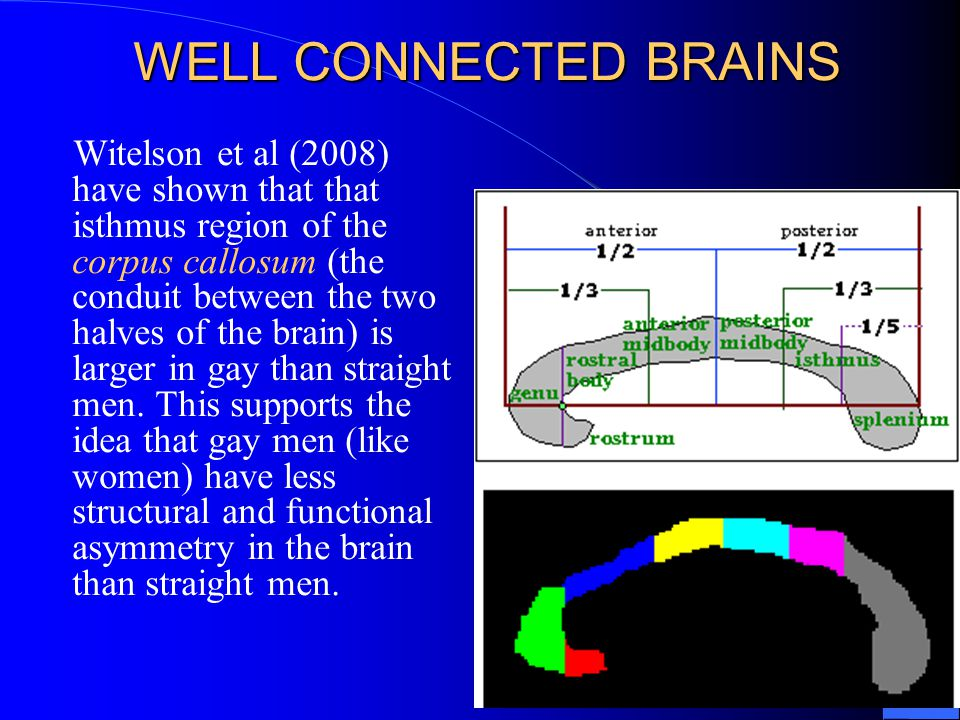 WELL CONNECTED BRAINS