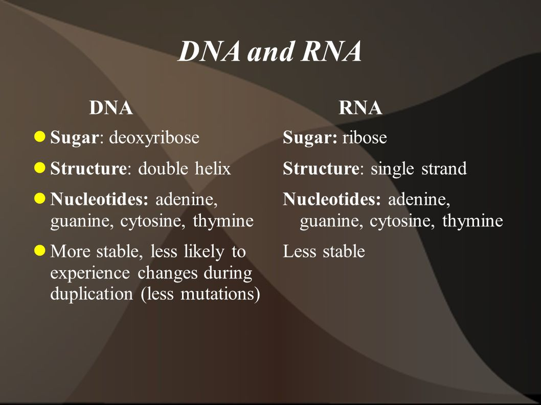 DNA and RNA DNA RNA Sugar: deoxyribose Structure: double helix