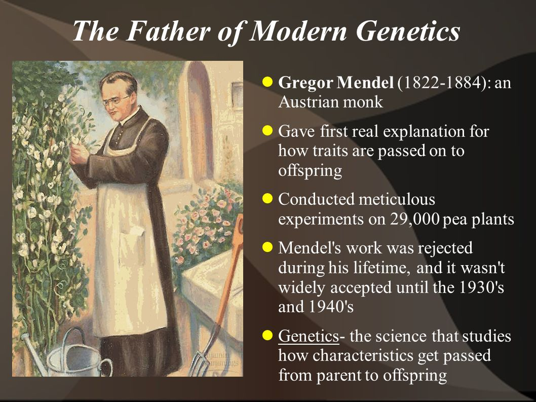 The Father of Modern Genetics