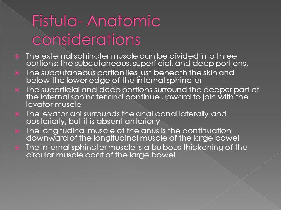 Fistula- Anatomic considerations