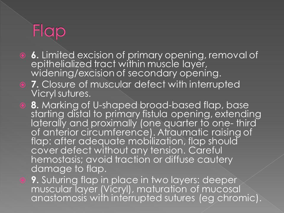 Flap 6. Limited excision of primary opening, removal of epithelialized tract within muscle layer, widening/excision of secondary opening.
