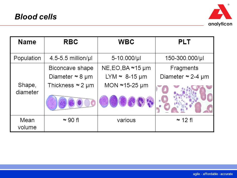 Blood cells Name RBC WBC PLT Population million/µl /µl