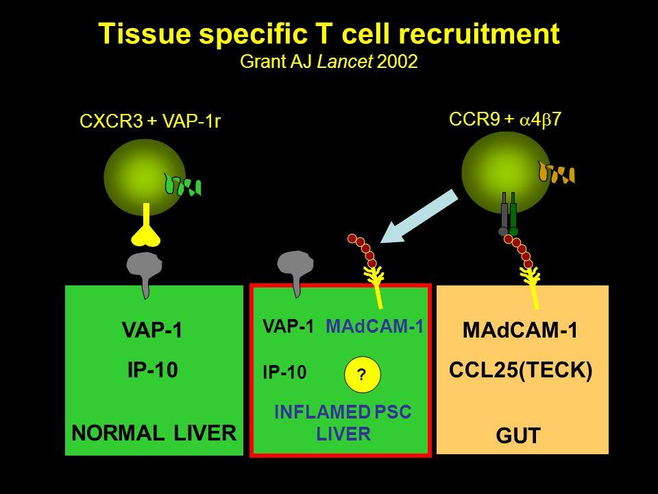 Tissue specific T cell recruitment Grant AJ Lancet 2002
