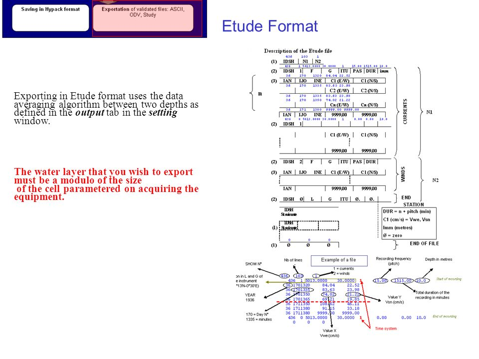 Etude Format Exporting in Etude format uses the data averaging algorithm between two depths as defined in the output tab in the setting window.