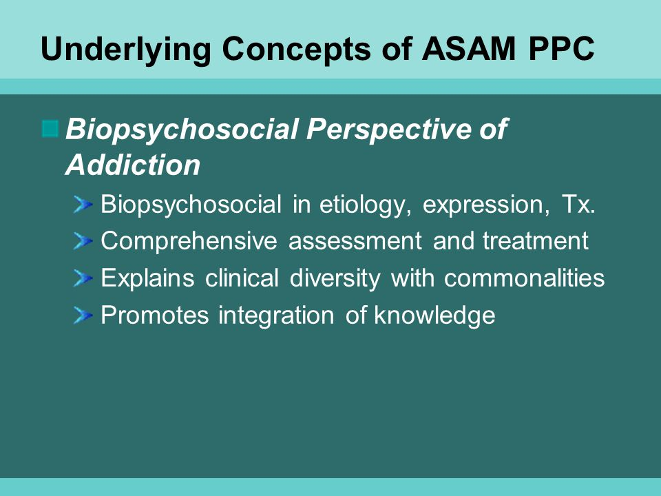 Underlying Concepts of ASAM PPC