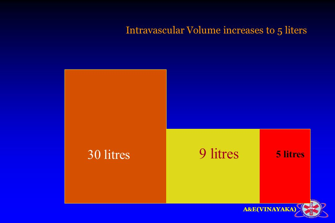 Intravascular Volume increases to 5 liters