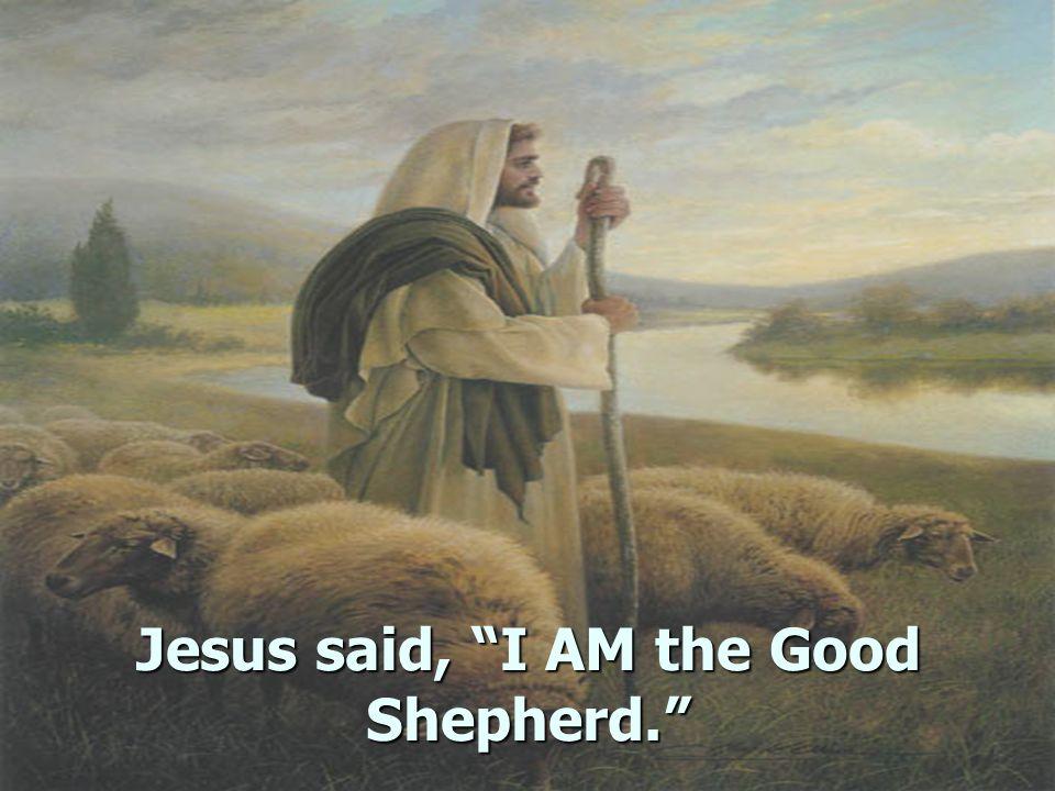 Jesus said, I AM the Good Shepherd.