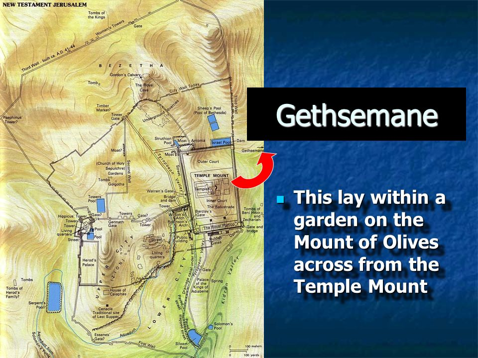 Gethsemane This lay within a garden on the Mount of Olives across from the Temple Mount 5