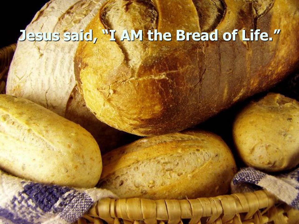 Jesus said, I AM the Bread of Life.
