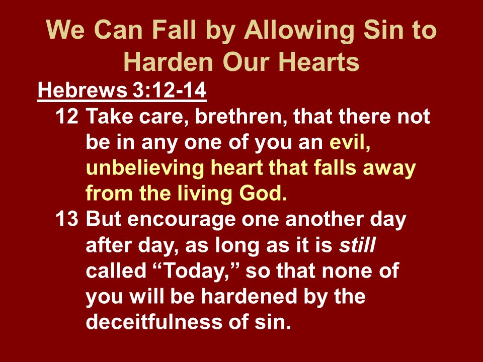 We Can Fall by Allowing Sin to Harden Our Hearts