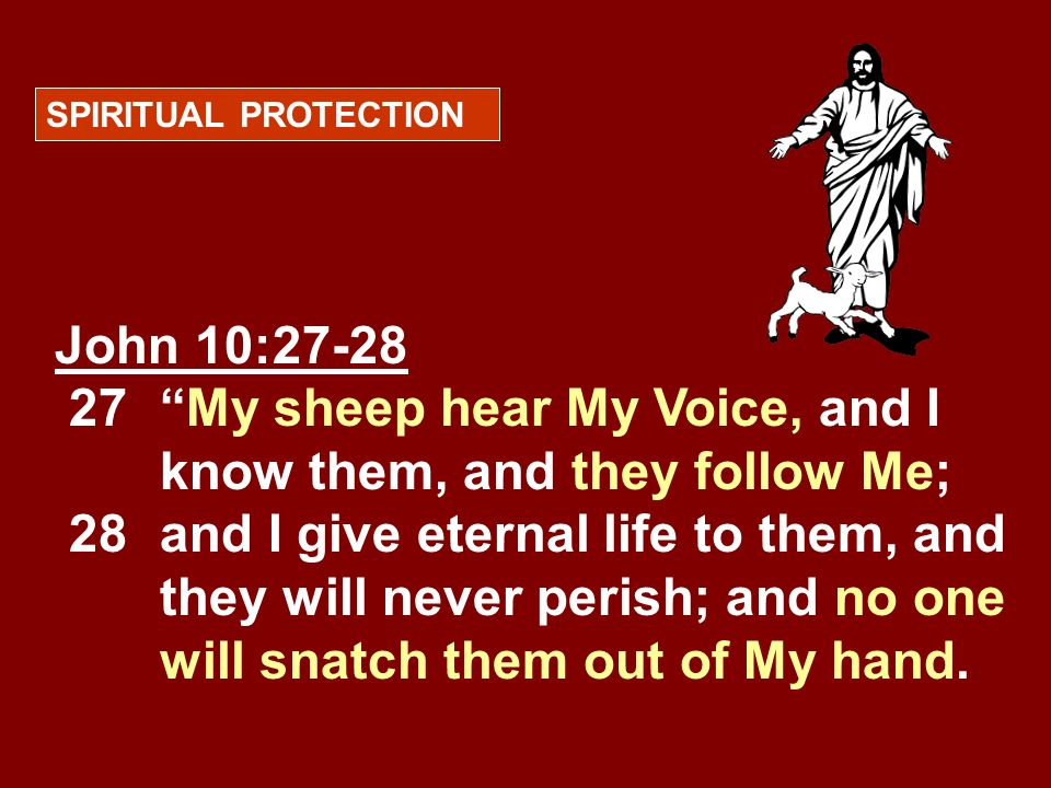 SPIRITUAL PROTECTIONJohn 10:27-28 27 My sheep hear My Voice, and I know them, and they follow Me;
