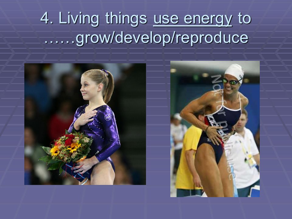 4. Living things use energy to ……grow/develop/reproduce