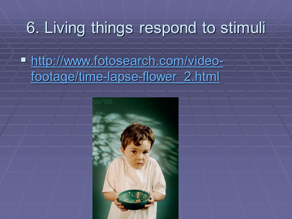 6. Living things respond to stimuli
