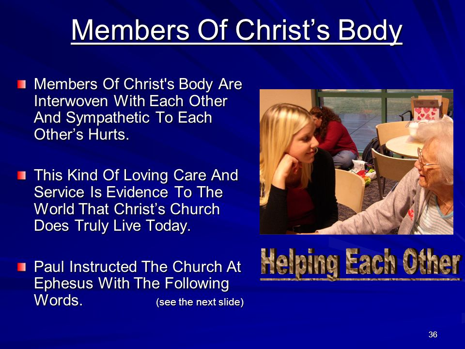 Members Of Christ's Body