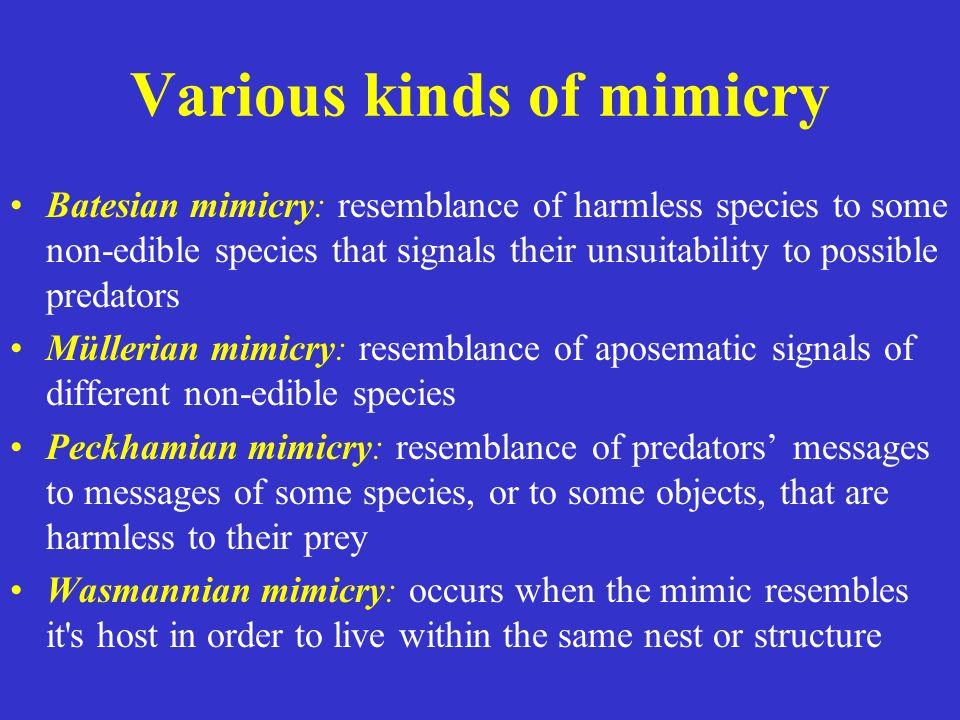 Various kinds of mimicry