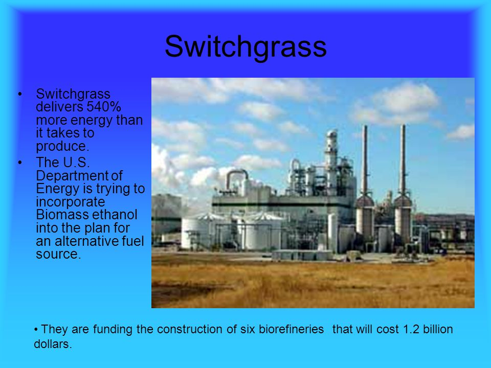 Switchgrass Switchgrass delivers 540% more energy than it takes to produce.