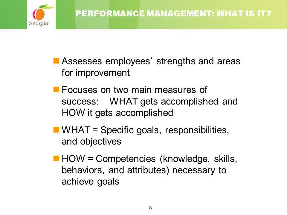 PERFORMANCE MANAGEMENT: WHAT IS IT