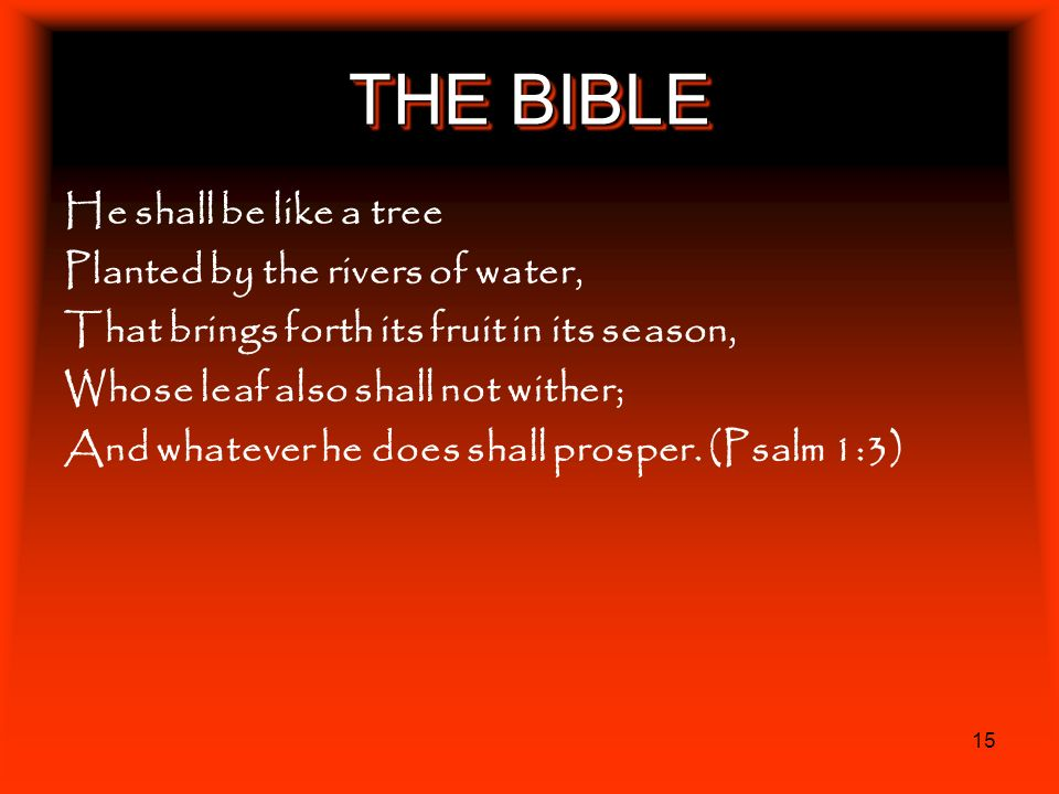 THE BIBLE He shall be like a tree Planted by the rivers of water,