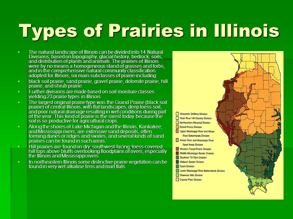 Types of Prairies in Illinois