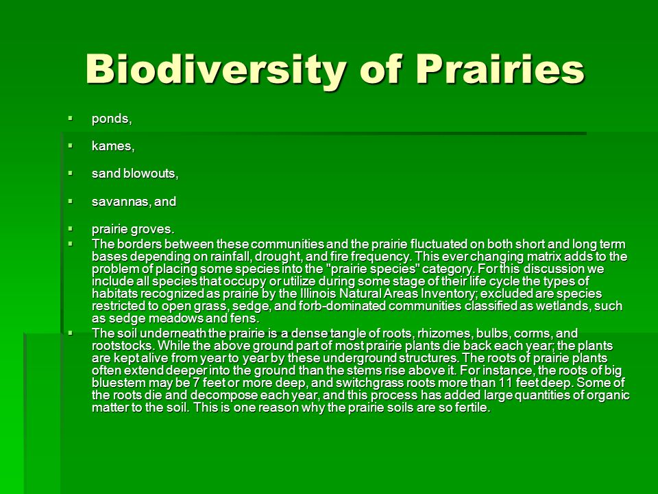 Biodiversity of Prairies