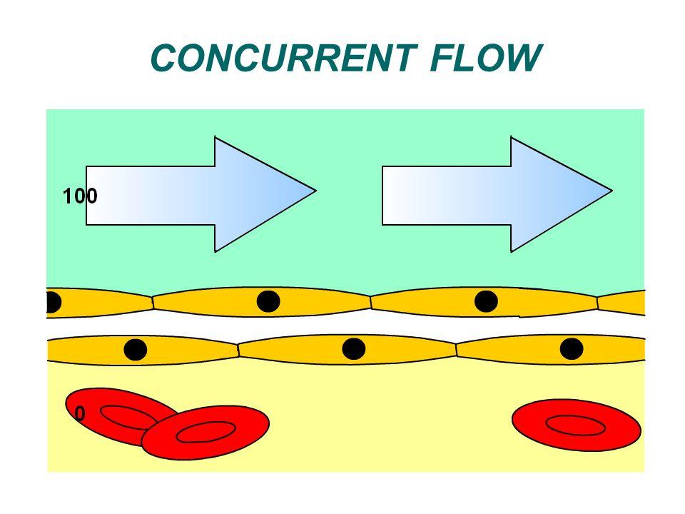 CONCURRENT FLOW
