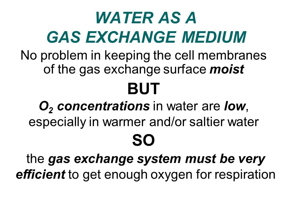WATER AS A GAS EXCHANGE MEDIUM