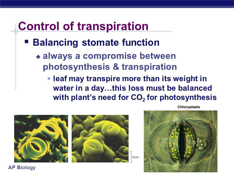 Control of transpiration