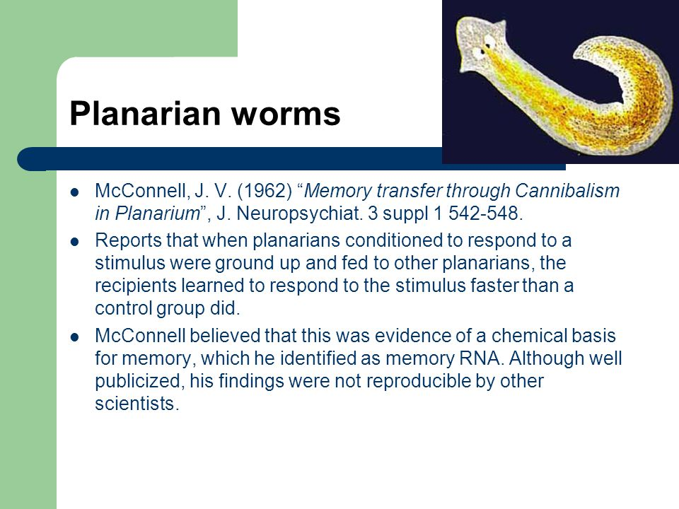 Planarian worms McConnell, J. V. (1962) Memory transfer through Cannibalism in Planarium , J. Neuropsychiat. 3 suppl 1 542-548.