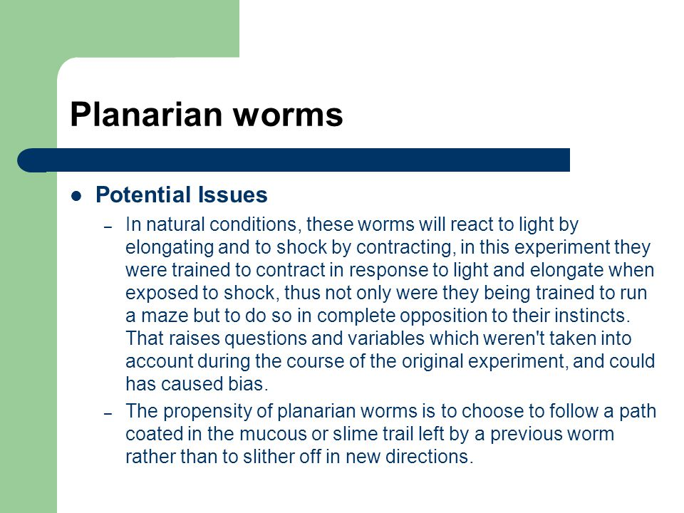 Planarian worms Potential Issues