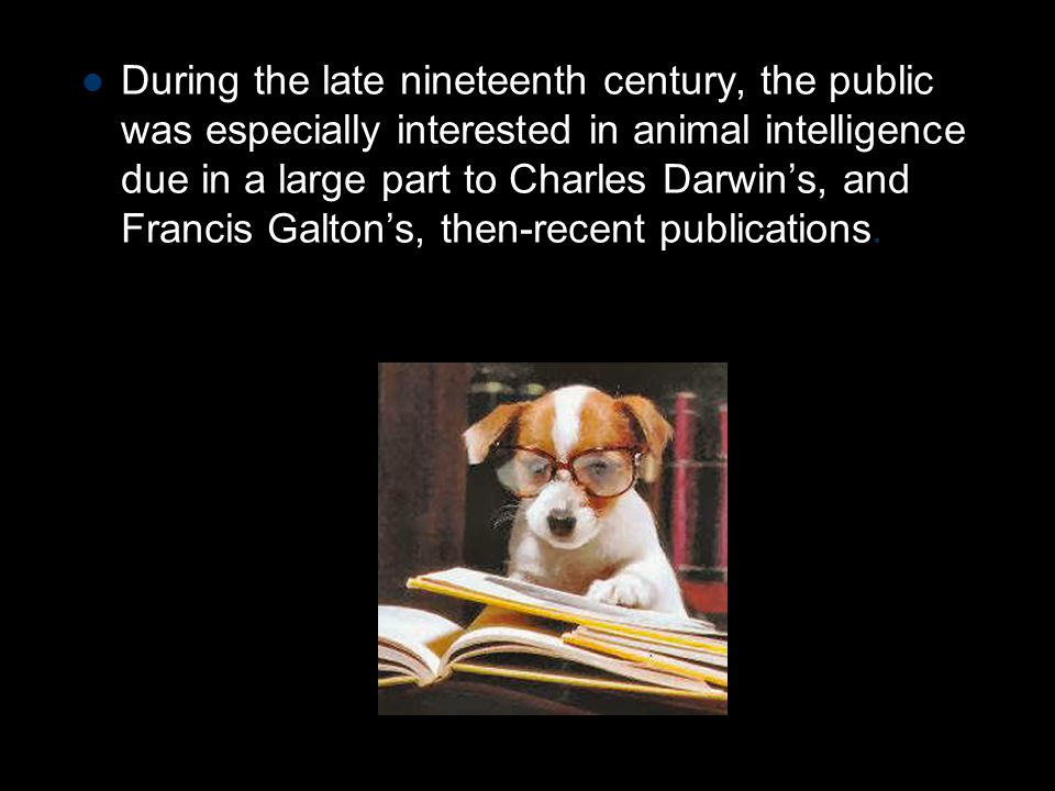 During the late nineteenth century, the public was especially interested in animal intelligence due in a large part to Charles Darwin's, and Francis Galton's, then-recent publications.