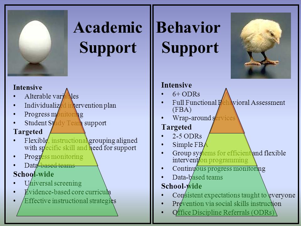 Academic Support Behavior Support