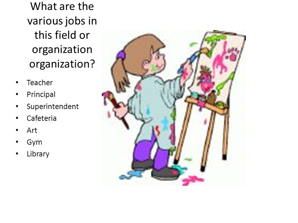 What are the various jobs in this field or organization organization