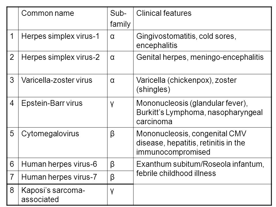 Common name Sub- family. Clinical features. 1. Herpes simplex virus-1. α. Gingivostomatitis, cold sores, encephalitis.