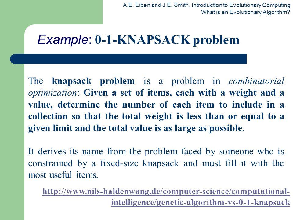 Example: 0-1-KNAPSACK problem