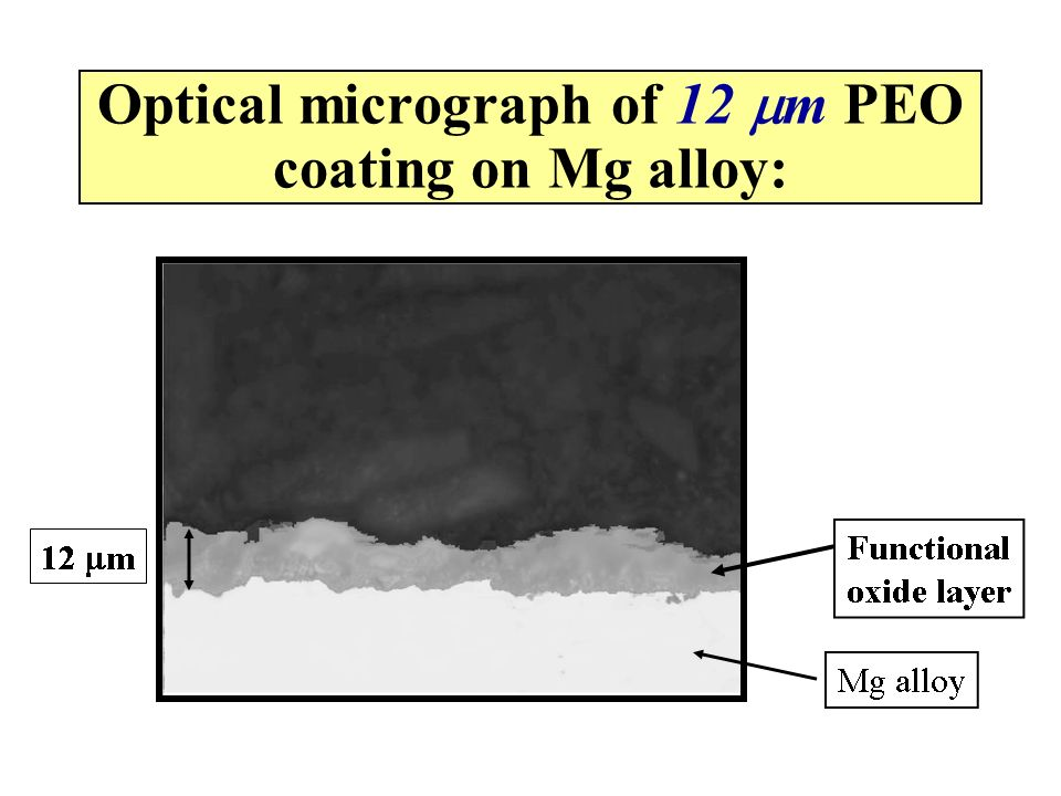 Optical micrograph of 12 mm PEO coating on Mg alloy: